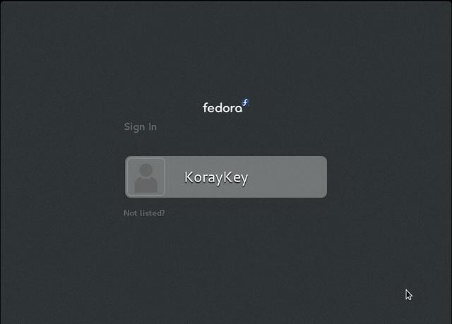 Fedora_Install20