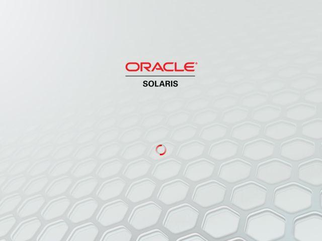 Solaris11LvInstall_17