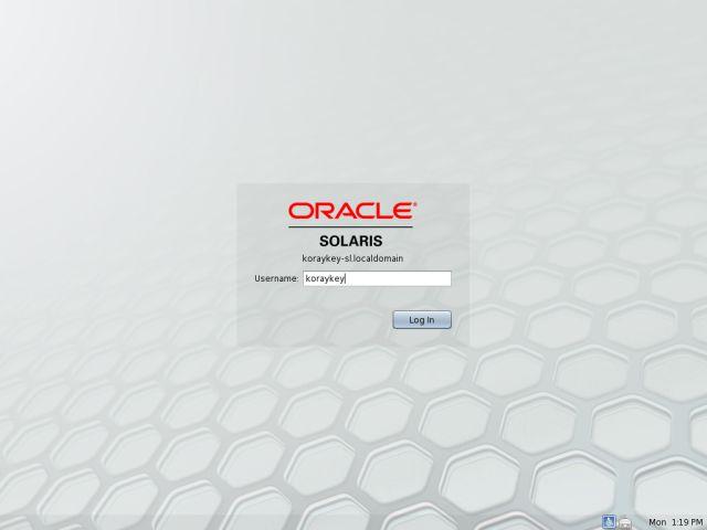 Solaris11LvInstall_18