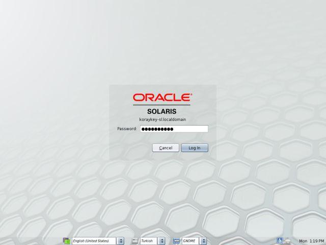 Solaris11LvInstall_19